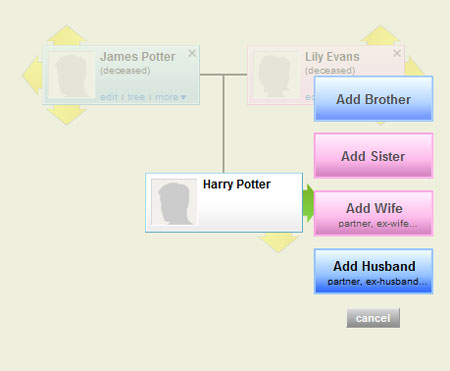 Family History of Harry Potter